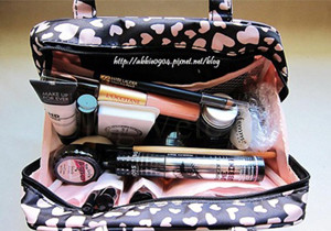 Makeup Tools Purse